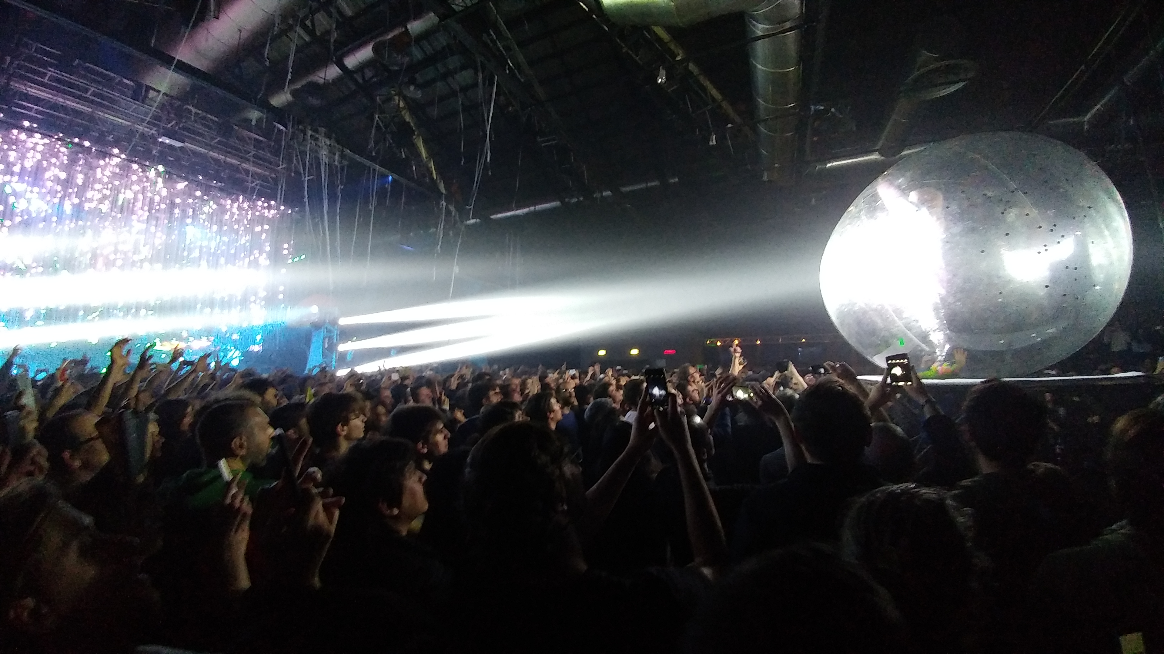 Wayne Coyne in da ball